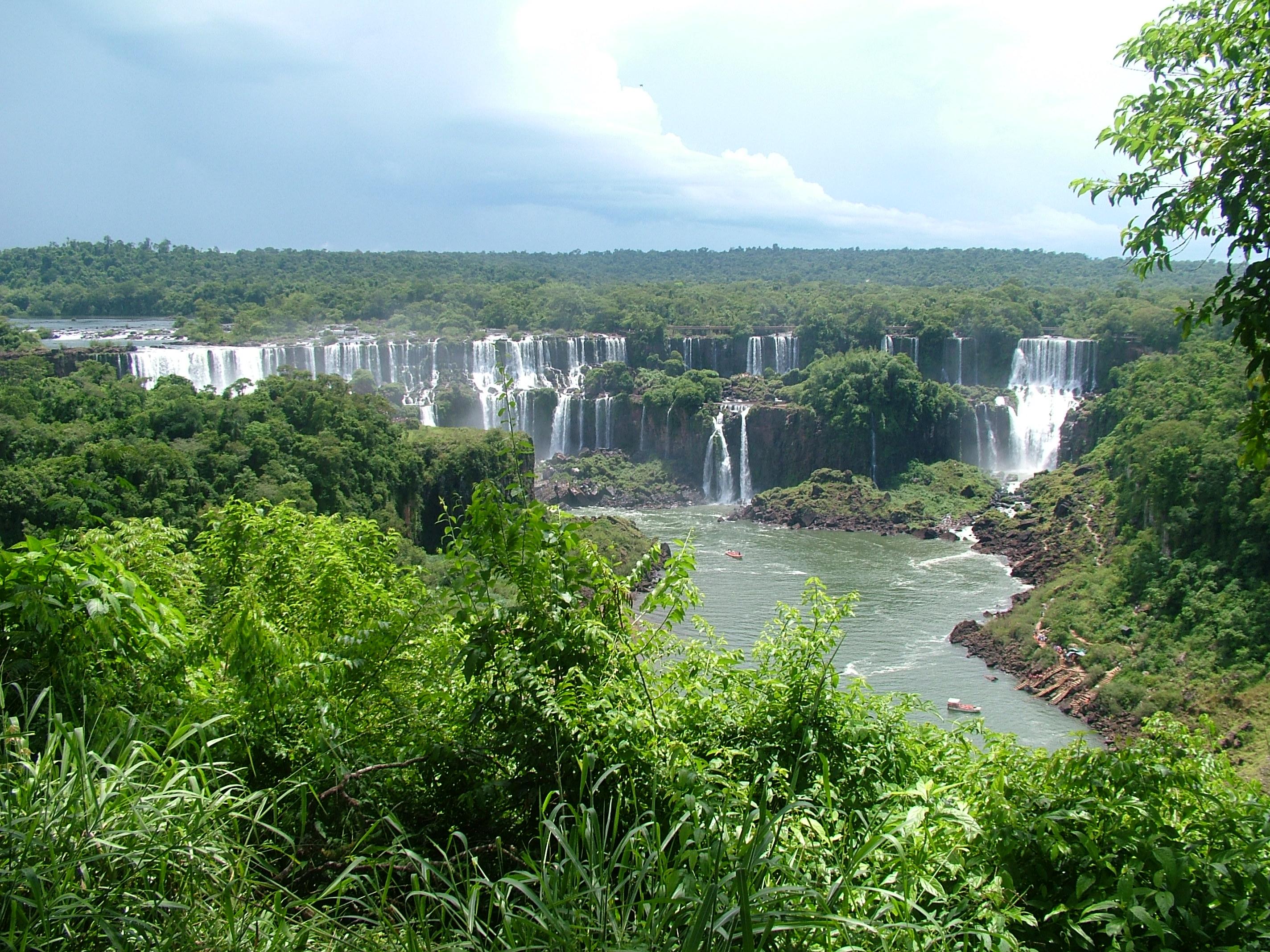 foresta-amazonica