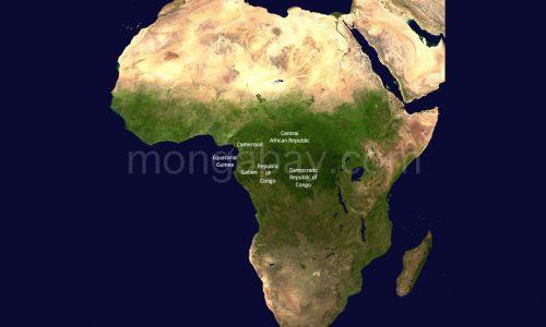 LA FORESTA PLUVIALE AFRICANA