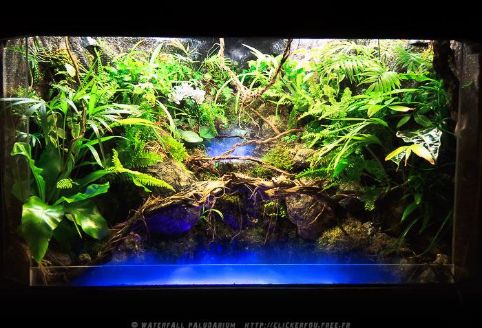 waterfall_paludarium_by_clickerfou-d3dkugw