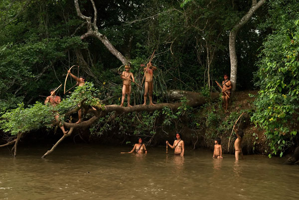 Risultati immagini per foreste e popoli nativi