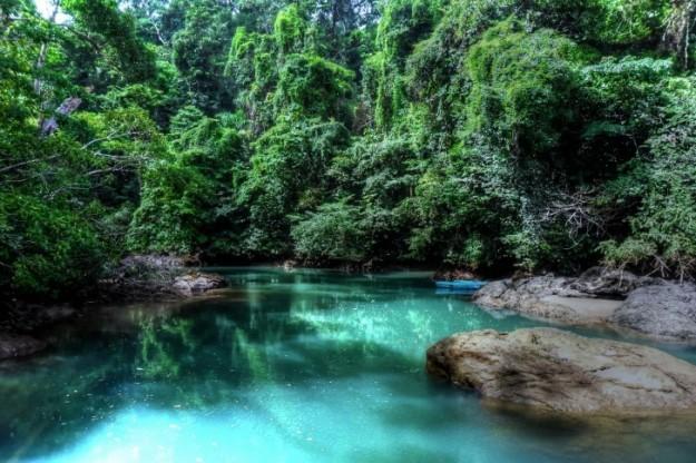 acque-limpide-nella-rigogliosa-foresta-tropicale