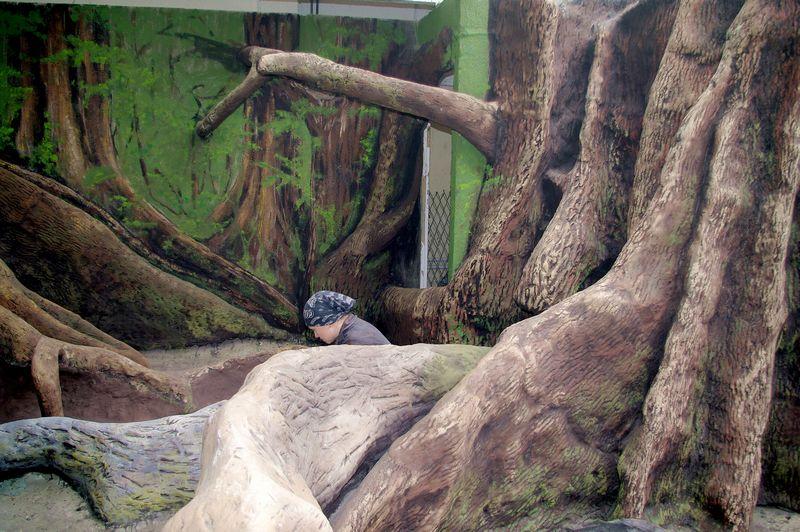 zoo10 (6)