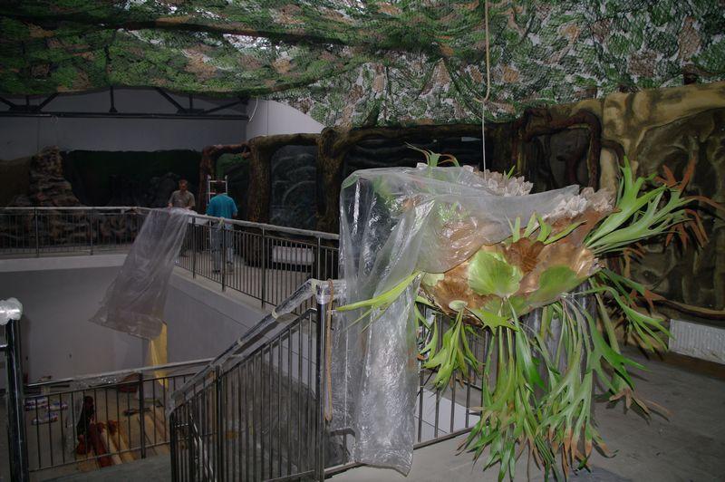 zoo12 (24)