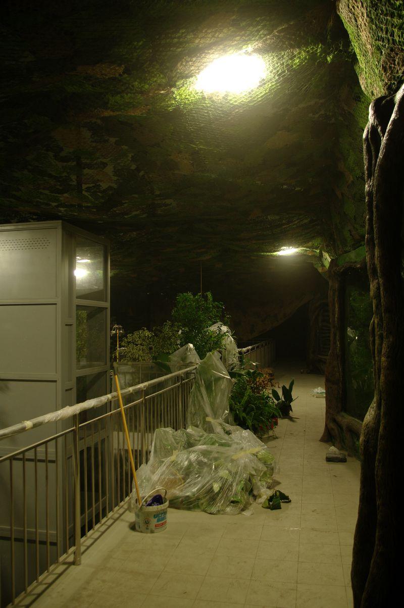 zoo13 (5)