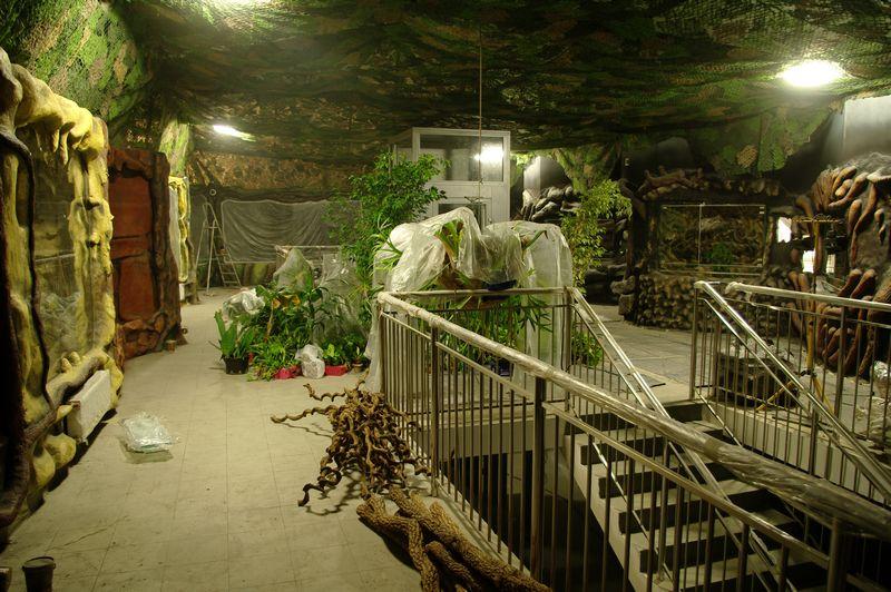 zoo13 (8)