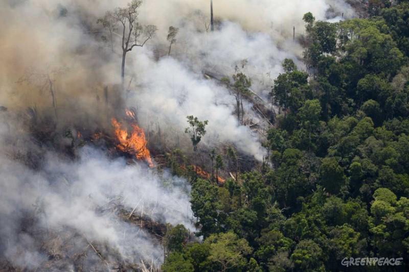 incendi-amazzonia