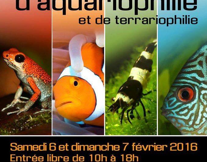 14° Salon azurèen d'aquariophilie et de terrariophilie- Antibes (Fr)