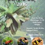 Dendro-day 2016 – Aalst (Belgium) – Zondag 29 mei 2016