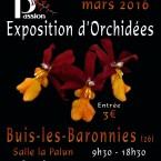 14° Exposition d'Orchidèes – 5-6 mars 2016 – Buis-les-Baronnies (Fr)