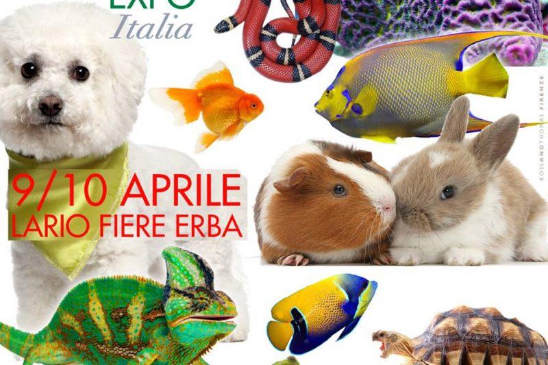 ESOTIKA MILANO LARIO FIERE ERBA 9/10 APRILE