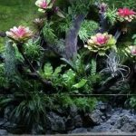 M-rainforest: CAA-快乐的建造者-记录5.5米雨林生态景观的诞生.