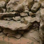 Come creare rocce artificiali