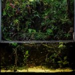 Terrarium 140x68x150 cm – Mountain wall creek – by Aquascapers of Sweden