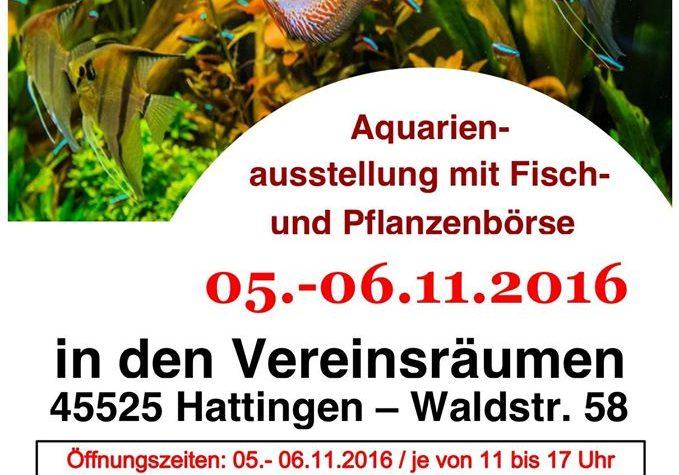 Mostra-mercato pesci per acquario e piante – Hattingen (D) – 5-6 Novembre 2016