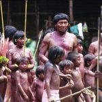 LE POPOLAZIONE DELLE FORESTE PLUVIALI