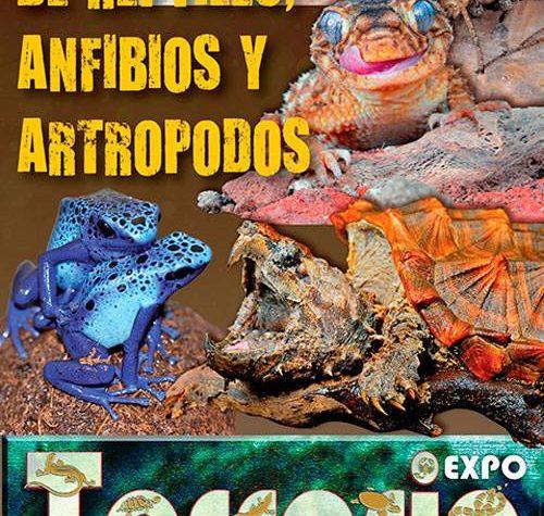 Expo Terraria Madrid (Spagna) – 19 novembre 2016