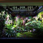 Terrarium  M-rainforest 尚意会