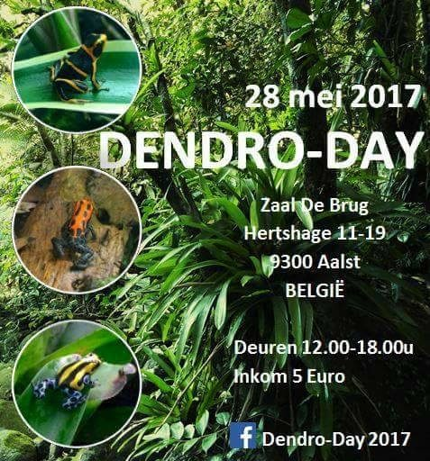 DENDRO-DAY – Aalst (Belgio) . 28 maggio 2017