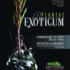 PLANTAE EXOTICUM – 25 February 2017 – Lakeland (FL) – USA