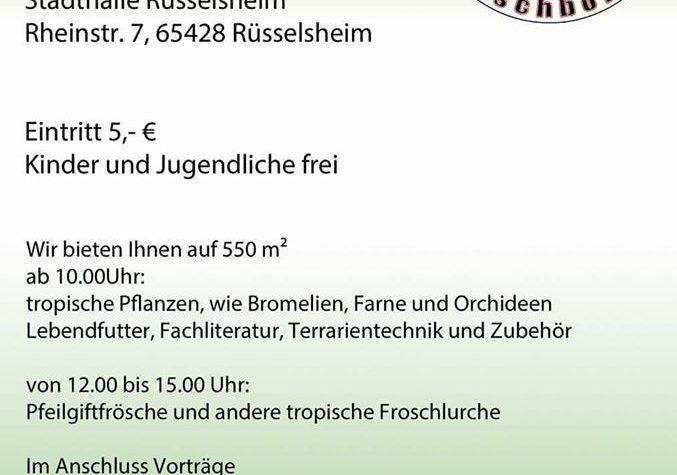 Russelsheimer Froschborse – 1 aprile 2017