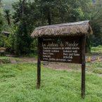 LE FORESTE TROPICALI NEL MONDO: Tamburco, Apurimac and Machupicchu, Cusco – Perù.