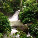 LE FORESTE TROPICALI NEL MONDO: Cajamarca Peru.