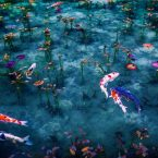 Monet's Pond in Japan – Gifu Prefecture, Japan