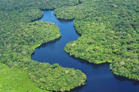 IL RIO DELLE AMAZZONI