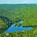 IL BACINO AMAZZONICO