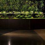 Freshwater Planted Aquarium for Amazon.com by Antonio Fong