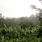 Costarica by Loïc Denès