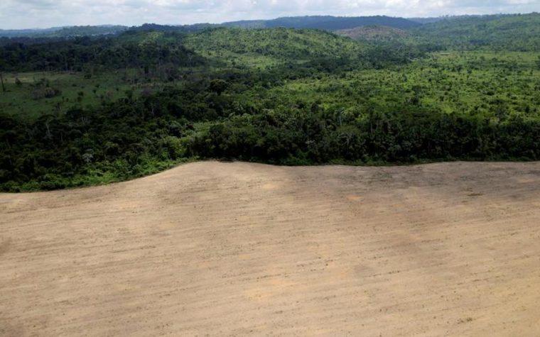 Il Brasile cede l'Amazzonia ai mercanti globali dell'oro