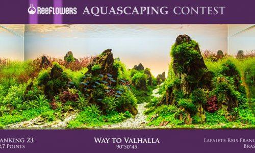 Reeflowers Aquascaping Contest 2017