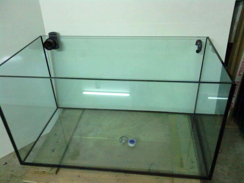 Fai da te costruire un acquario terraria for Arredare un acquario fai da te