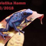 Terraristika Hamm – 10/03/2018
