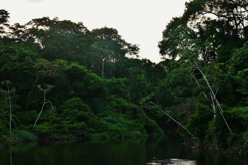 Awarradam, Suriname.