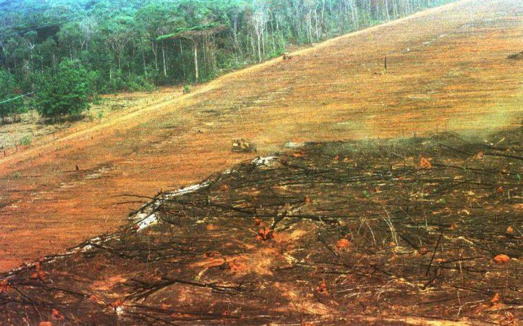 Brasile, un'area di foresta amazzonica grande quanto l'Italia non sarà più protetta.