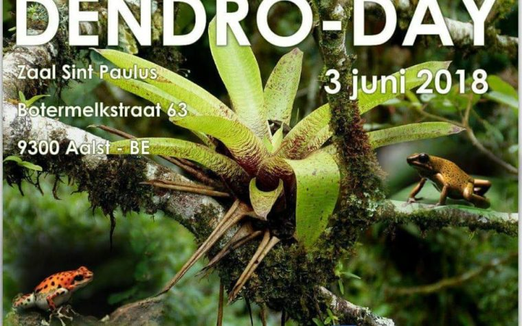 DENDRO-DAY – 3 GIUGNO 2018 – Aalst (BE)