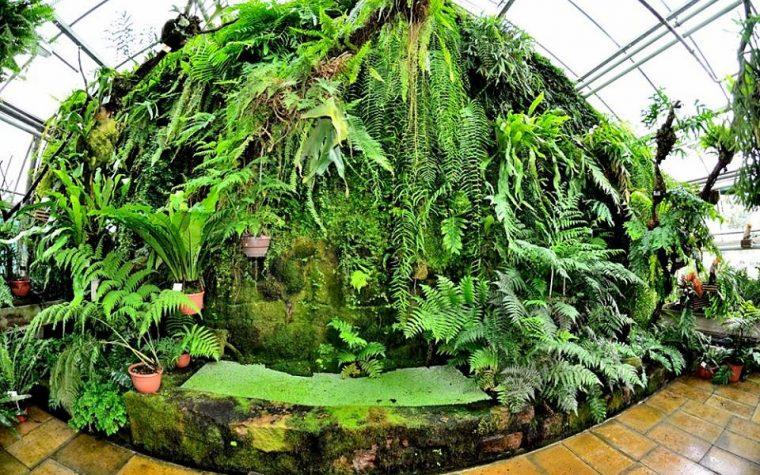 Giardino Botanico di Potsdam (DE)
