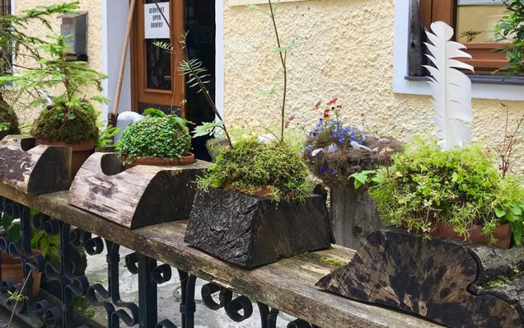 Wabi Kusa and Kokedama with a difference, in the rustic Austrian Alpine style