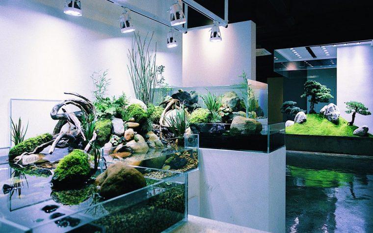 Nature Room – 李澜涛