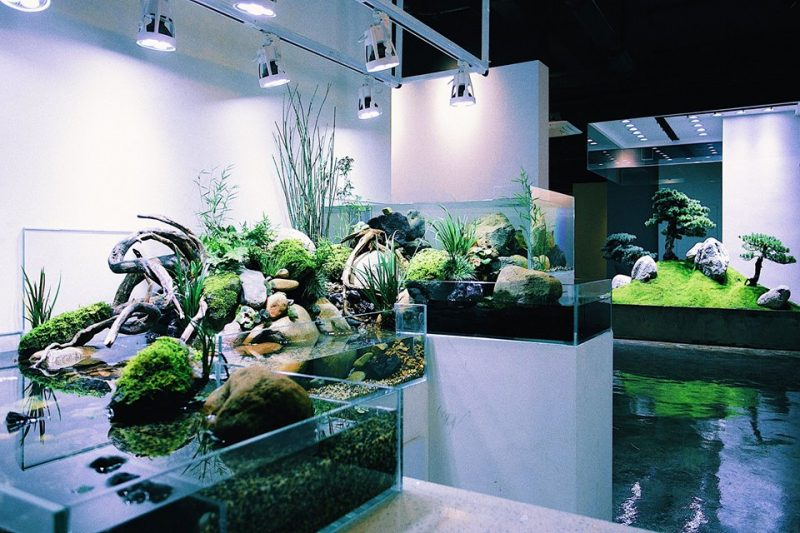 Nature Room – 李澜涛