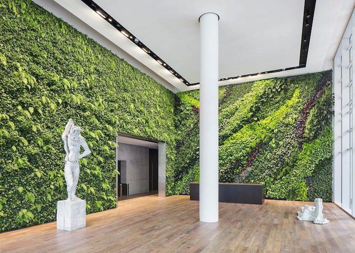 Verde verticale: ecco come portare il verde in città! (Video)