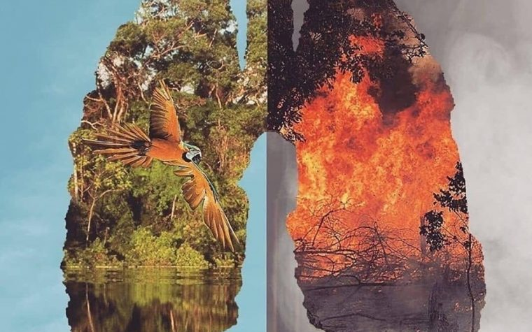 Brasile, incendi record bruciano l'Amazzonia.