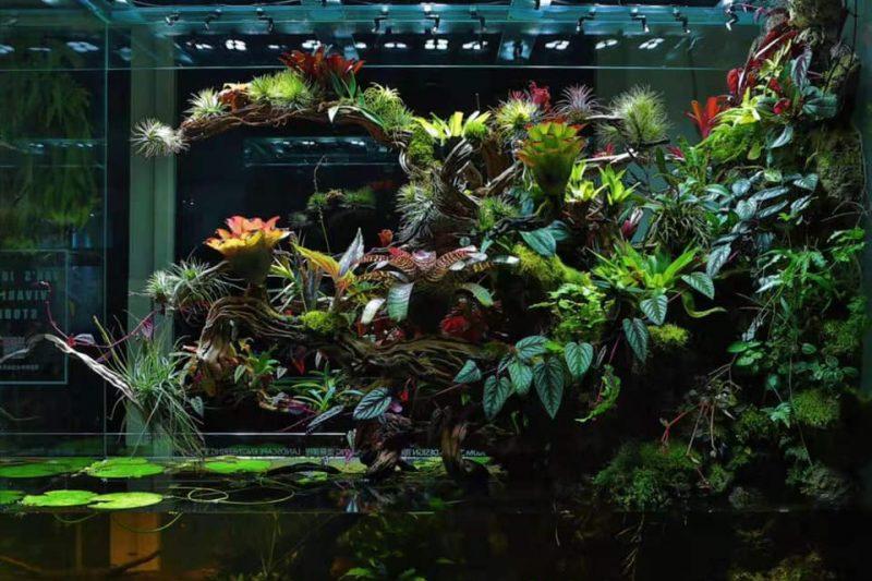 Paludarium – 180x70x150 (h)cm – Van's Jungle Studios